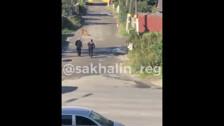 Полицейские отстрелили собаку в Южно-Сахалинске