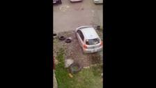 Южносахалинка отсыпала себе место под парковку и огородила его шинами
